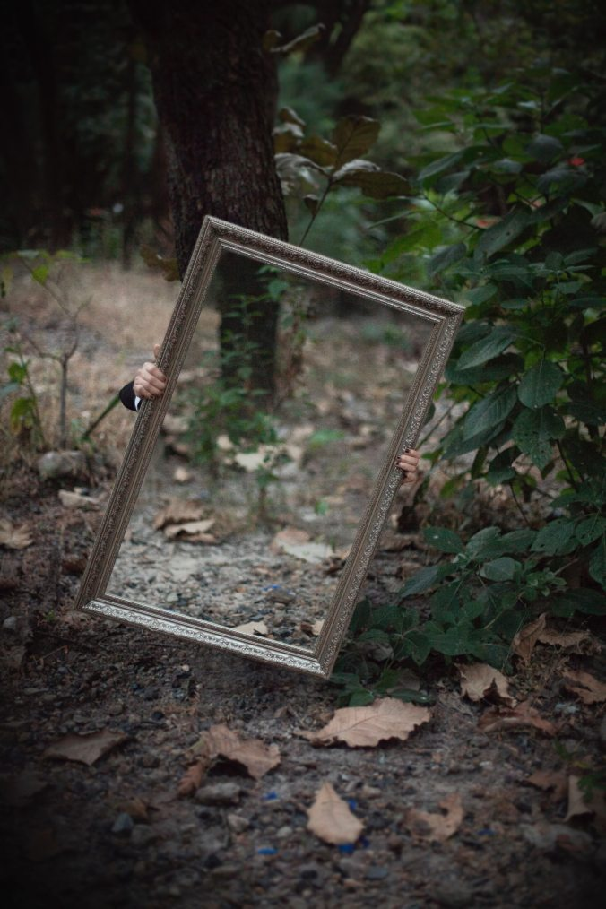 forest-mirror-reflection-1188410
